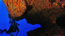 Immersione a Lampedusa